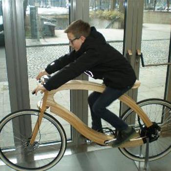Rad Holz405