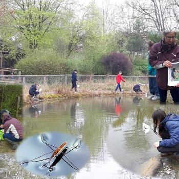 EmiLe Öko – Gewässerexkursion Mit Den NuT 6 Klassen